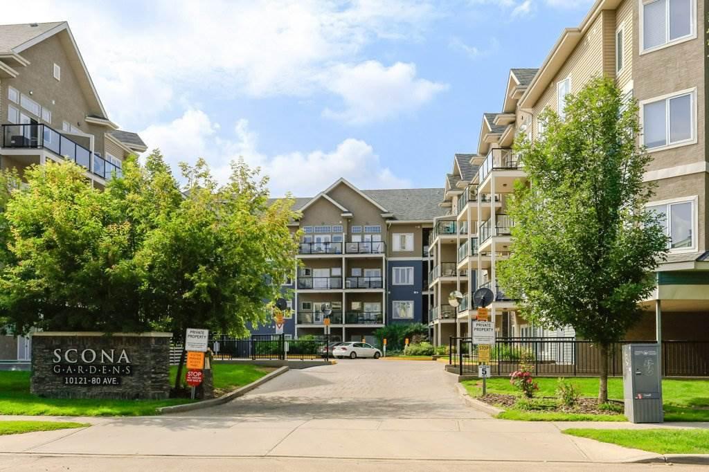 Main Photo: 244 10121 80 Avenue in Edmonton: Zone 17 Condo for sale : MLS®# E4206945