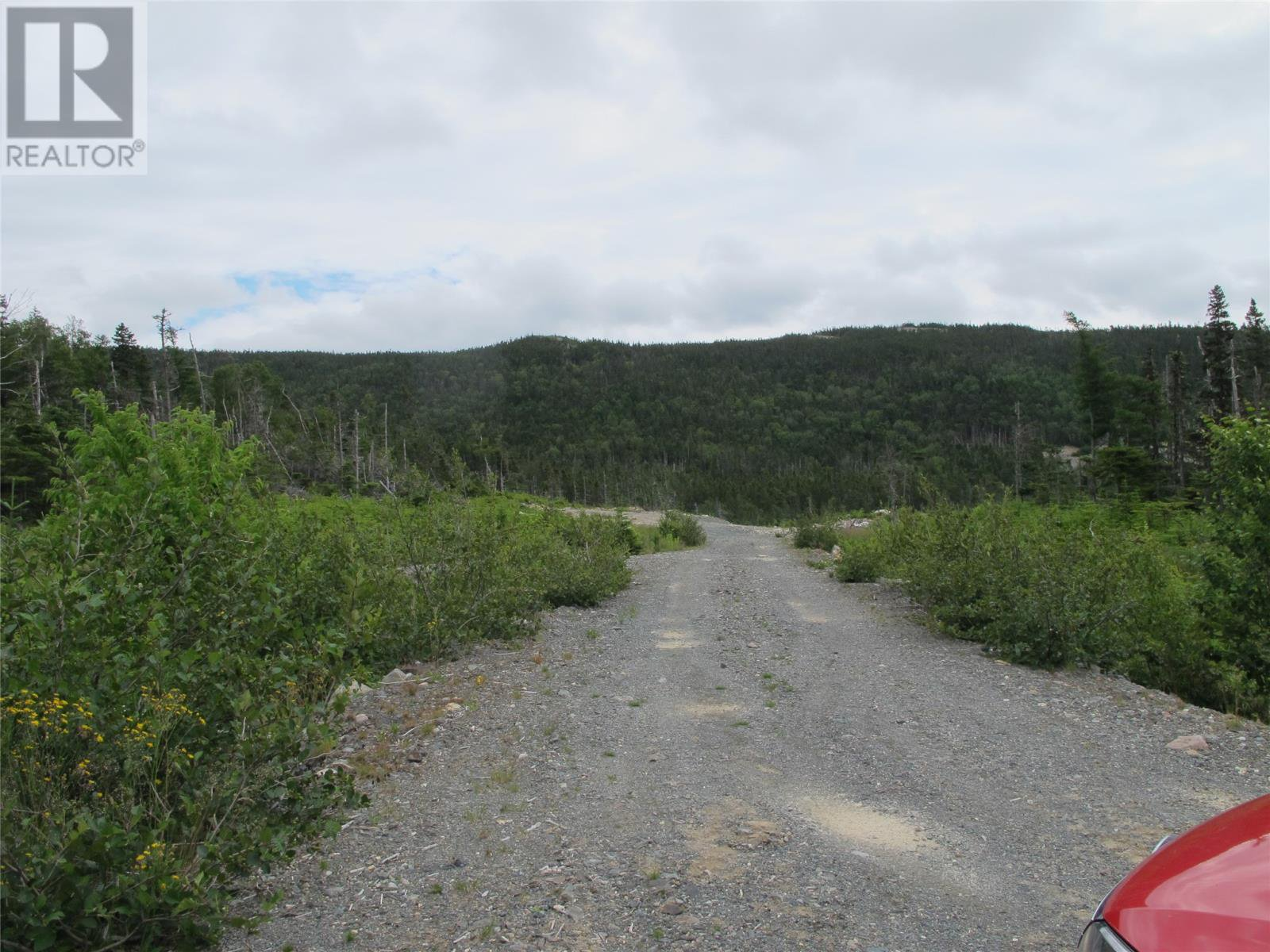 Main Photo: 193-197 Conception Bay Highway in Holyrood: Vacant Land for sale : MLS®# 1222849