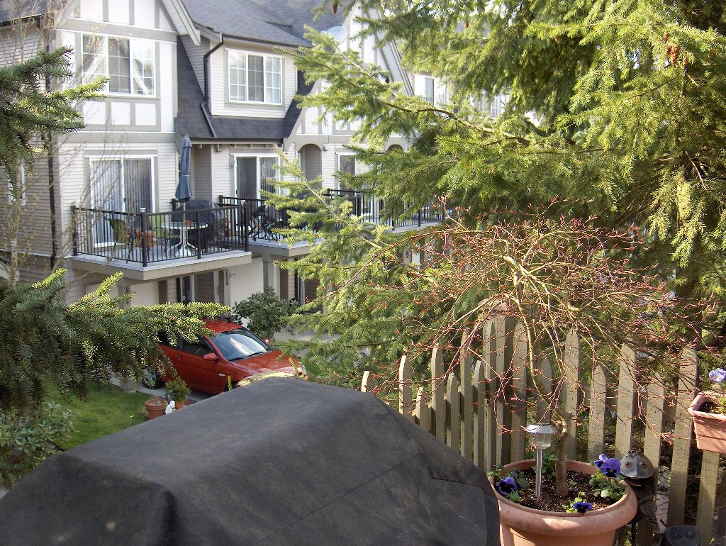 Photo 12: Photos: 12778 66 Ave in Surrey: Condo for sale : MLS®# F110686