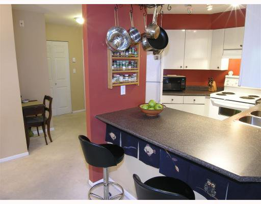 "Photo 5: Photos: 206 150 W 22ND Street in North_Vancouver: Central Lonsdale Condo for sale in ""THE SIERRA"" (North Vancouver)  : MLS®# V660143"