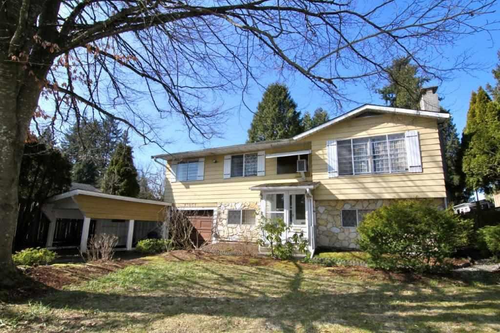 Main Photo: 11951 210 Street in Maple Ridge: Southwest Maple Ridge House for sale : MLS®# R2447211