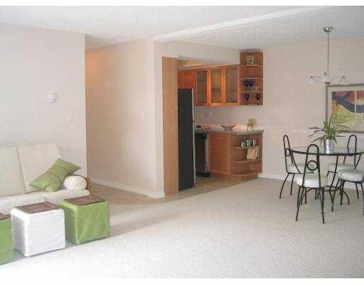 Liiving Room/Dining Area