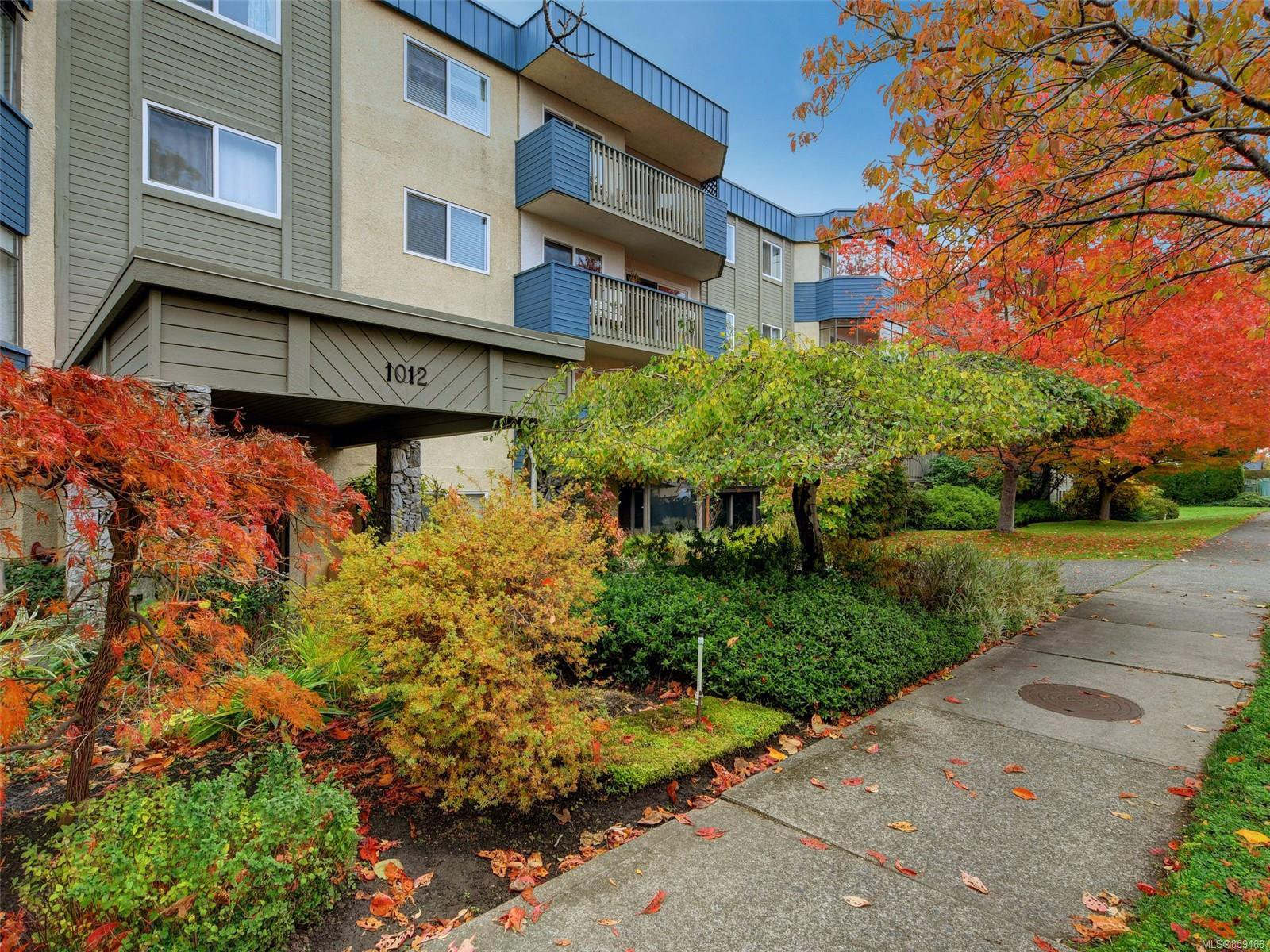 Main Photo: 209 1012 COLLINSON St in : Vi Fairfield West Condo for sale (Victoria)  : MLS®# 859466
