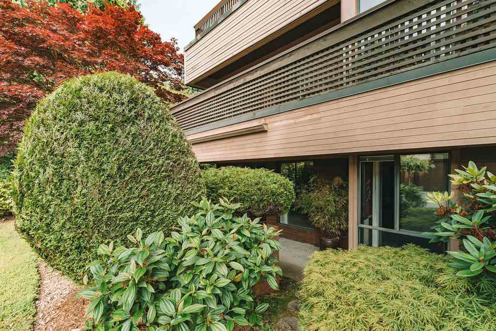 """Main Photo: 101 333 WETHERSFIELD Drive in Vancouver: South Cambie Condo for sale in """"LANGARA COURT"""" (Vancouver West)  : MLS®# R2467887"""
