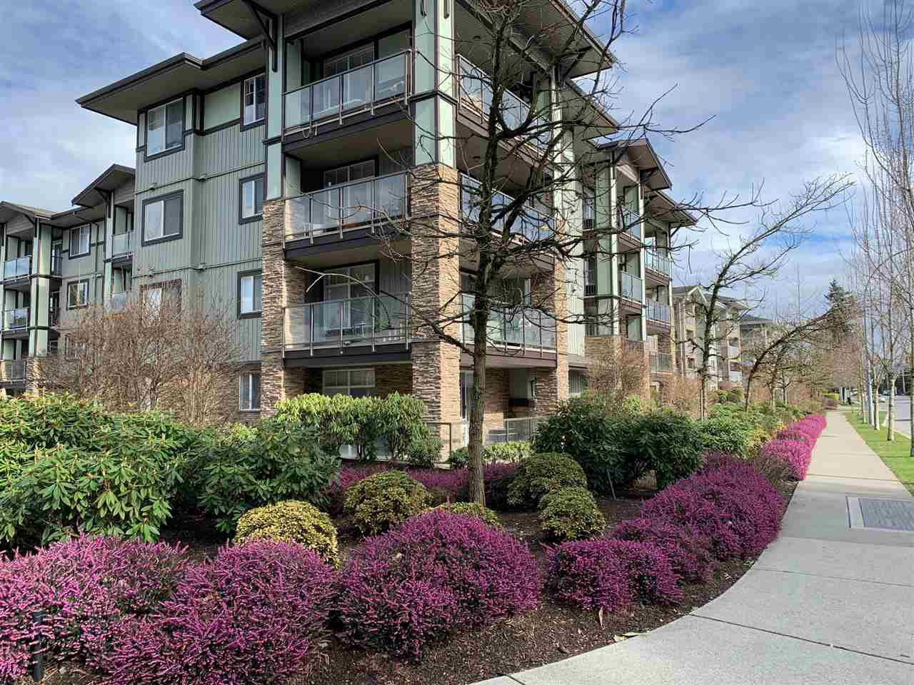 """Main Photo: 111 2038 SANDALWOOD Crescent in Abbotsford: Central Abbotsford Condo for sale in """"THE ELEMENT"""" : MLS®# R2443524"""