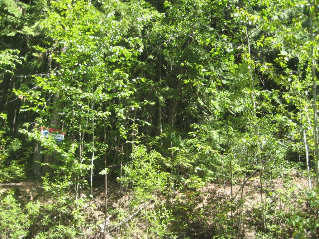 Main Photo: Lot 23 Vickers Trail in Anglemont: Land Only for sale : MLS®# 10011652