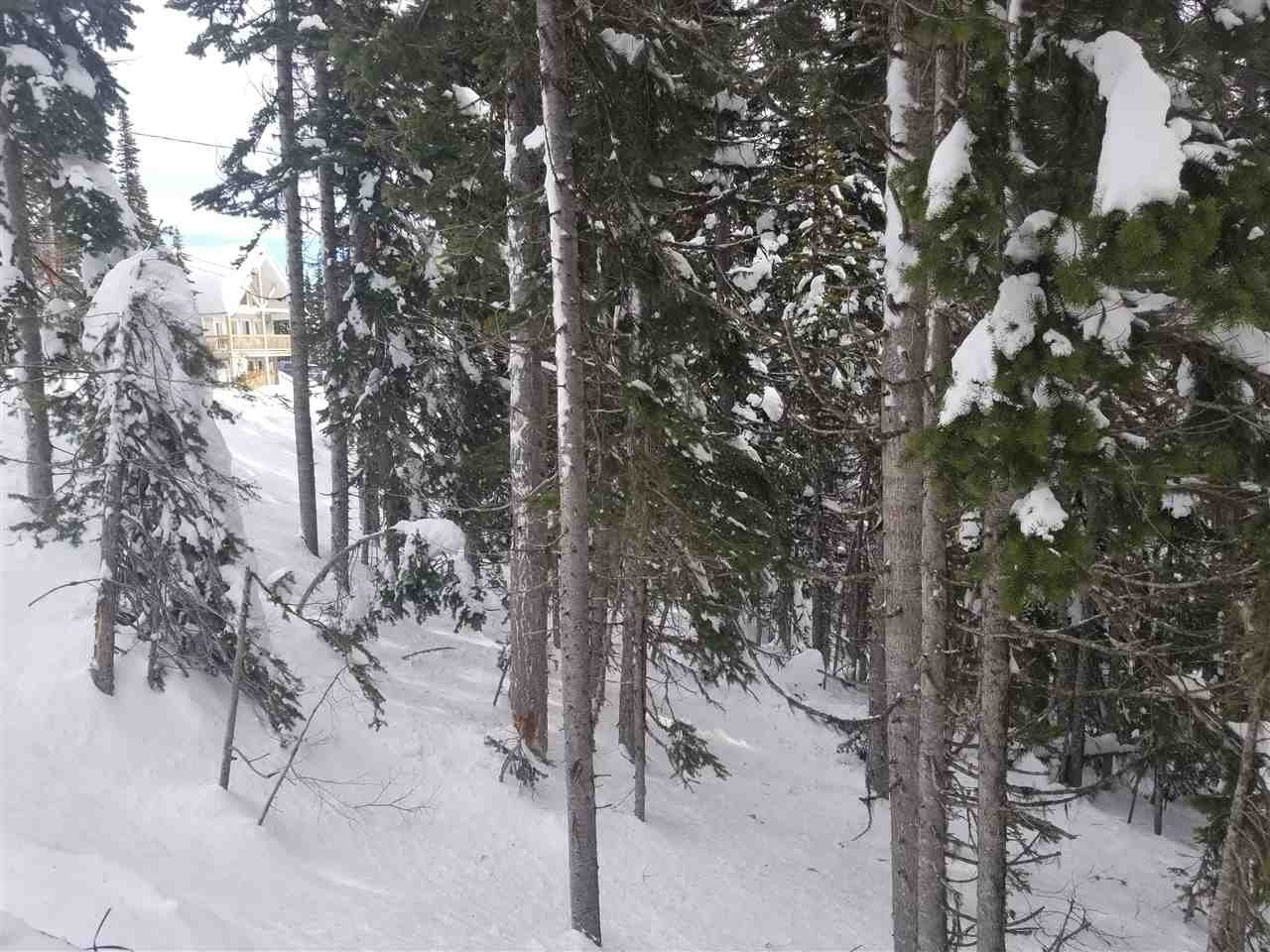 """Main Photo: 192 ALPINE Way in Smithers: Smithers - Rural Land for sale in """"Hudson Bay Mountain Estates"""" (Smithers And Area (Zone 54))  : MLS®# R2453889"""