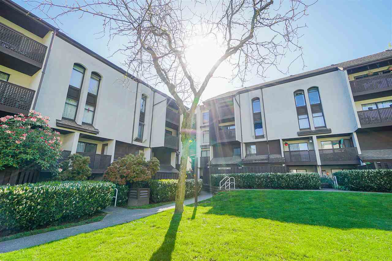 """Main Photo: 301 340 GINGER Drive in New Westminster: Fraserview NW Condo for sale in """"FRASER MEWS"""" : MLS®# R2459783"""