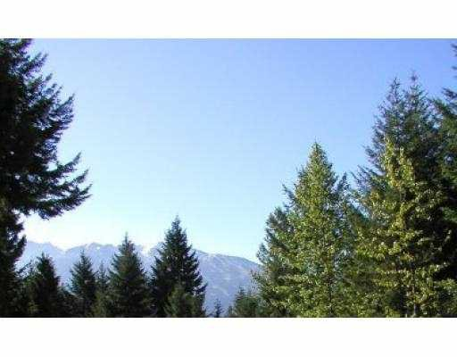 "Main Photo: 8301 NEEDLES Drive: Whistler Land for sale in ""ALPINE MEADOWS"" : MLS®# V685372"