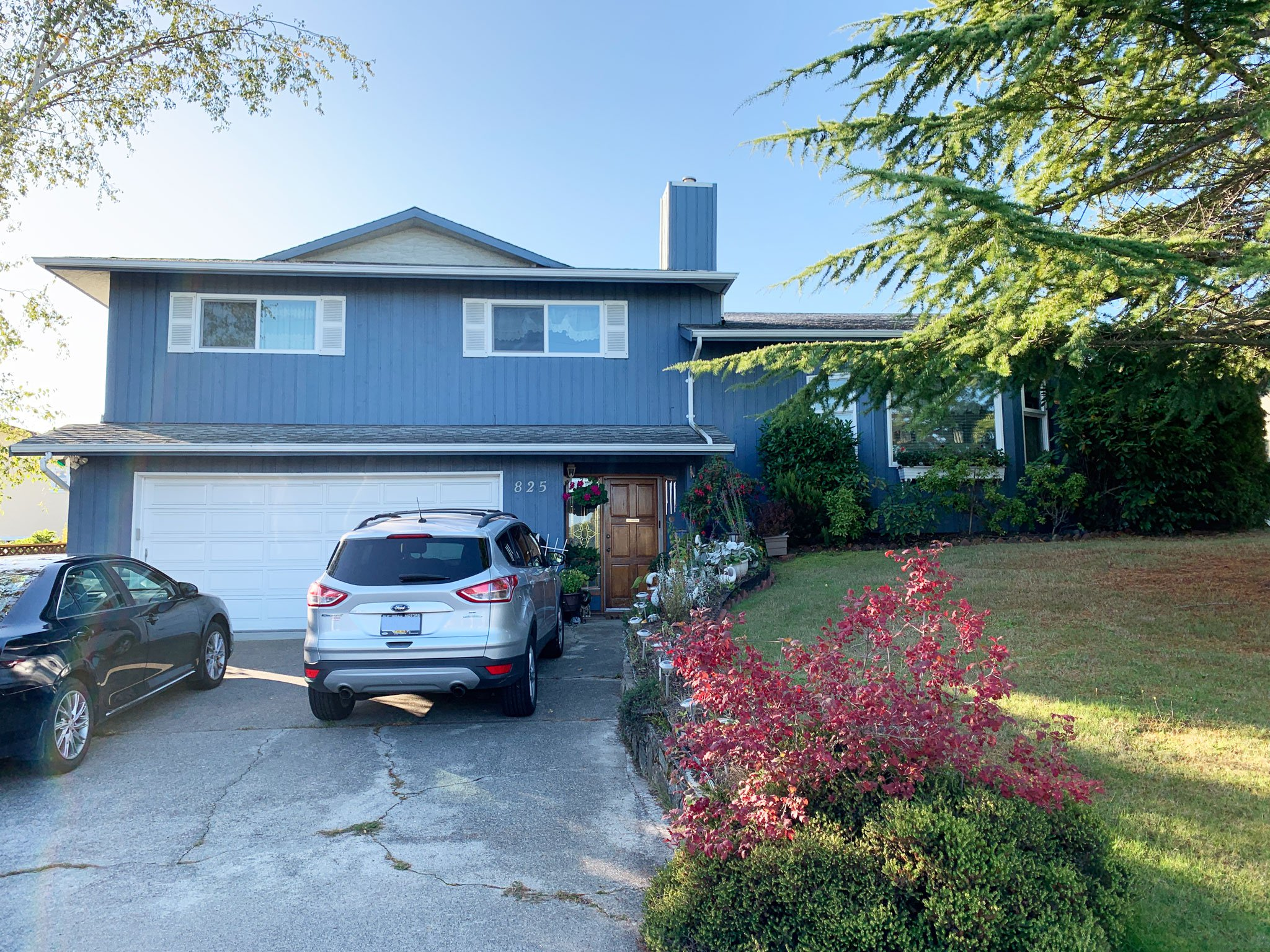 Main Photo: 825 Cameo Street in VICTORIA: SE High Quadra Single Family Detached for sale (Saanich East)  : MLS®# 414958