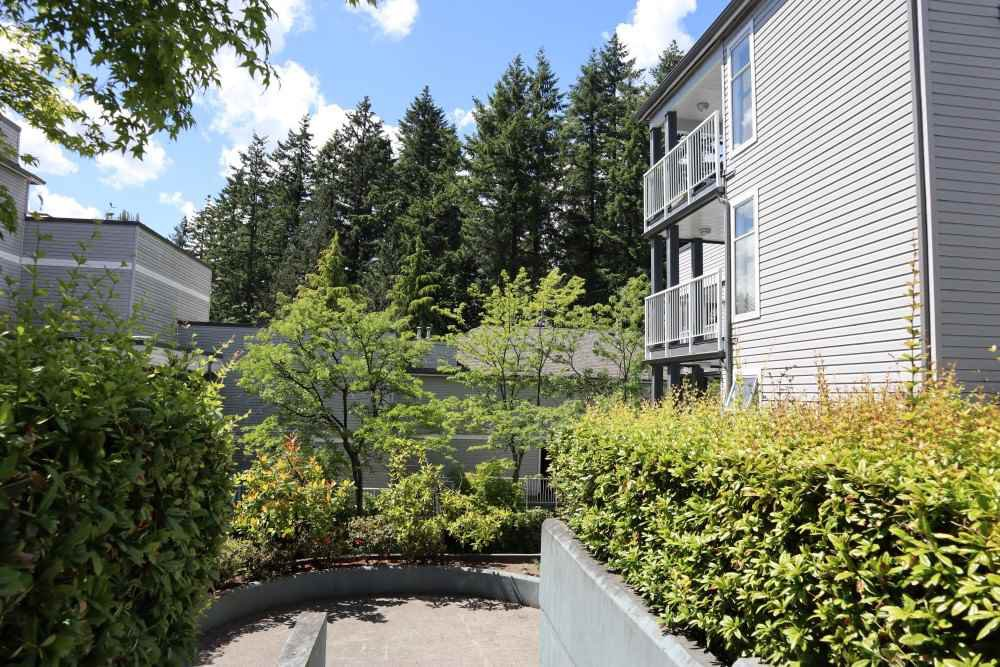 "Main Photo: 2 7345 SANDBORNE Avenue in Burnaby: South Slope Townhouse for sale in ""Sandborne Woods"" (Burnaby South)  : MLS®# R2498527"