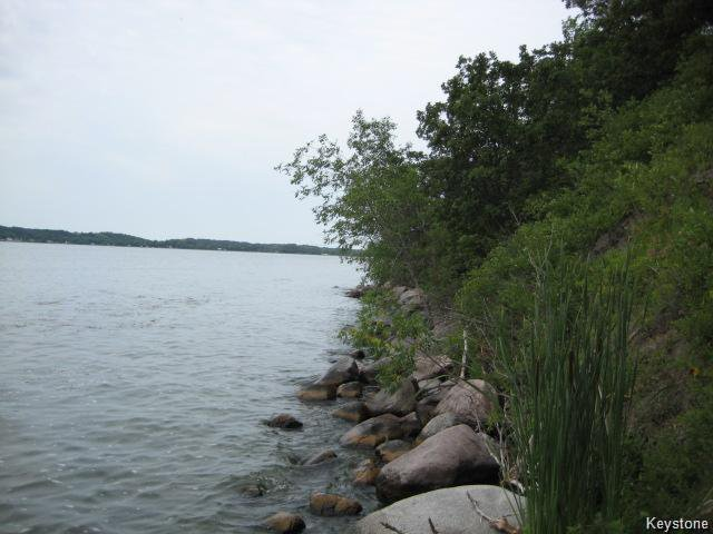 Main Photo: 130 lakeview meadows Drive in Pelican Lake: R34 Residential for sale (R34 - Turtle Mountain)  : MLS®# 202018619