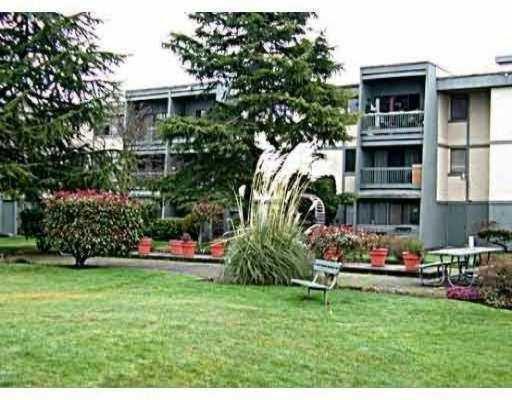 Main Photo: 305 3451 SPRINGFIELD Drive in Richmond: Steveston North Condo for sale : MLS®# V741634