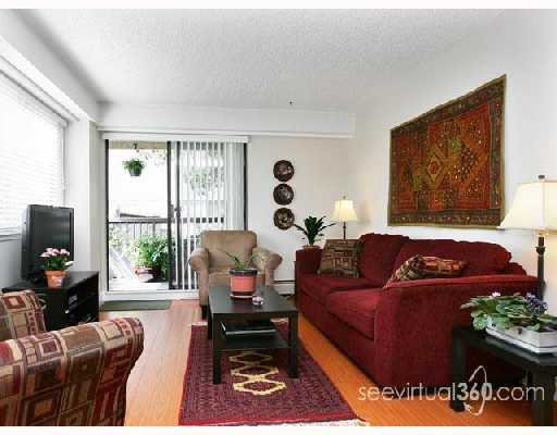 "Main Photo: 204 47 AGNES Street in New_Westminster: Downtown NW Condo for sale in ""Fraser House"" (New Westminster)  : MLS®# V724104"