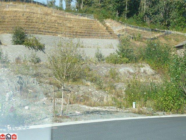 "Main Photo: 36497 CARNARVON Court in Abbotsford: Sumas Mountain Land for sale in ""Falcon Ridge"" : MLS®# F1021267"