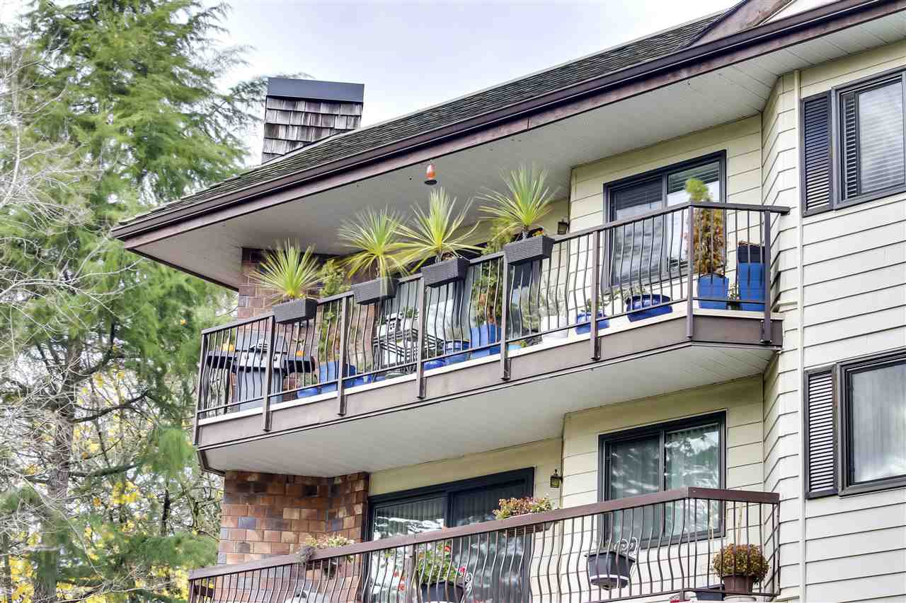 """Main Photo: 303 10160 RYAN Road in Richmond: South Arm Condo for sale in """"STORNOWAY"""" : MLS®# R2519204"""