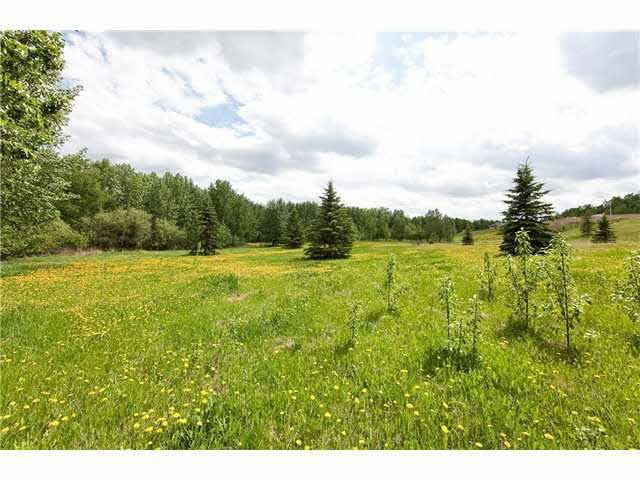 Main Photo: 54325 RGE RD 280: Rural Sturgeon County House for sale : MLS®# E4215294