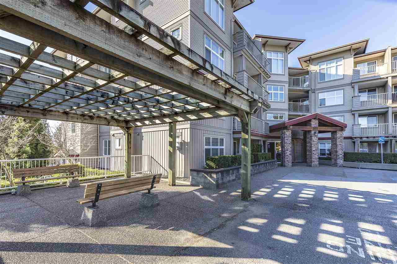 "Main Photo: 114 2515 PARK Drive in Abbotsford: Central Abbotsford Condo for sale in ""VIVA ON PARK"" : MLS®# R2446836"