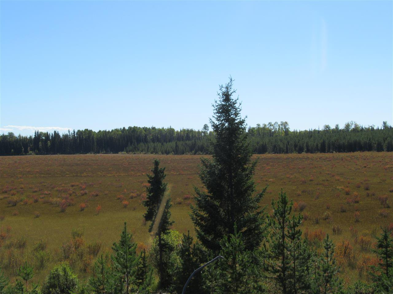 Photo 12: Photos: DL 6426 TONKA Road: 150 Mile House Land for sale (Williams Lake (Zone 27))  : MLS®# R2497364