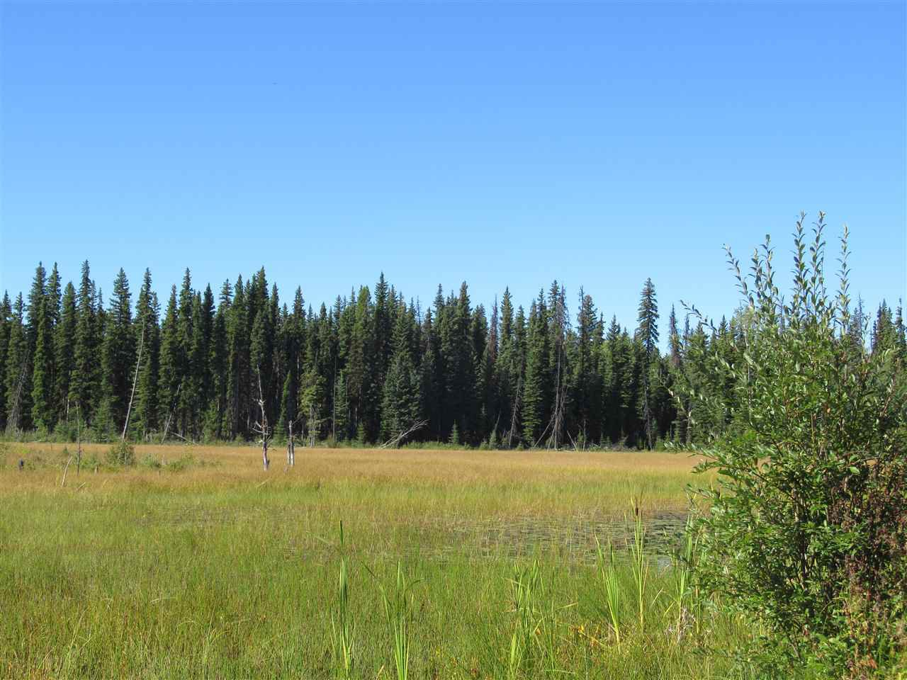 Main Photo: DL 6426 TONKA Road: 150 Mile House Land for sale (Williams Lake (Zone 27))  : MLS®# R2497364
