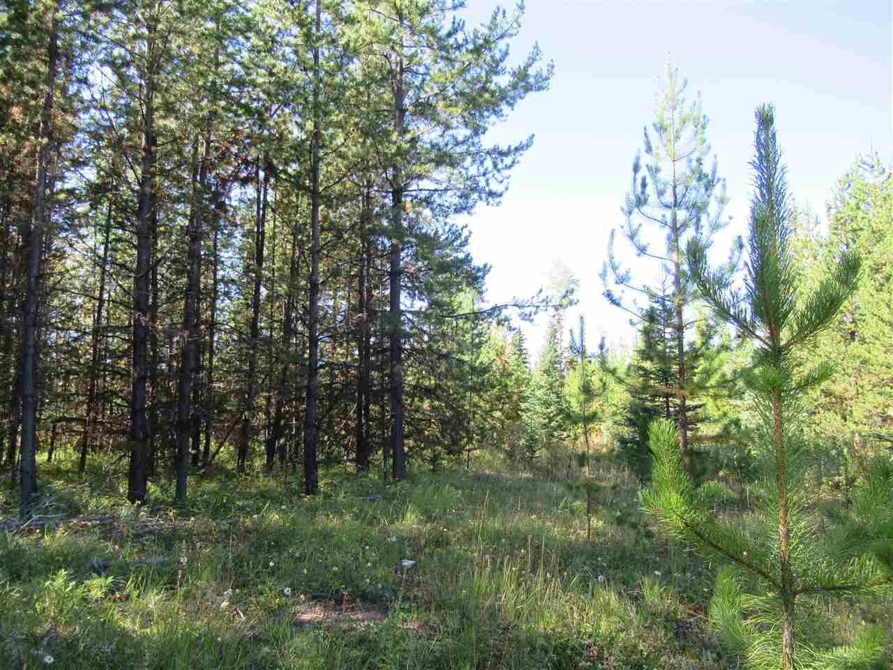 Photo 20: Photos: DL 6426 TONKA Road: 150 Mile House Land for sale (Williams Lake (Zone 27))  : MLS®# R2497364