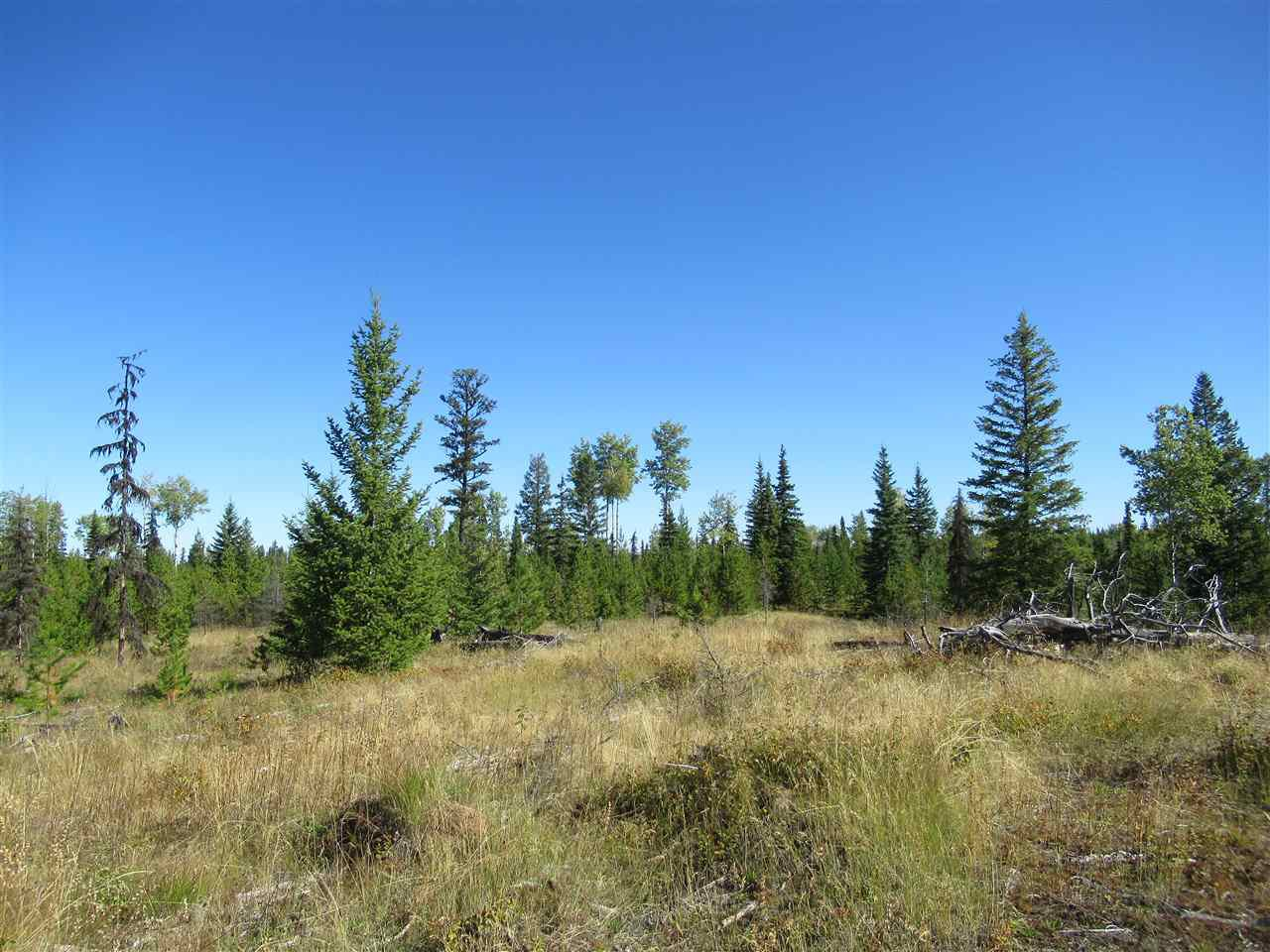 Photo 16: Photos: DL 6426 TONKA Road: 150 Mile House Land for sale (Williams Lake (Zone 27))  : MLS®# R2497364
