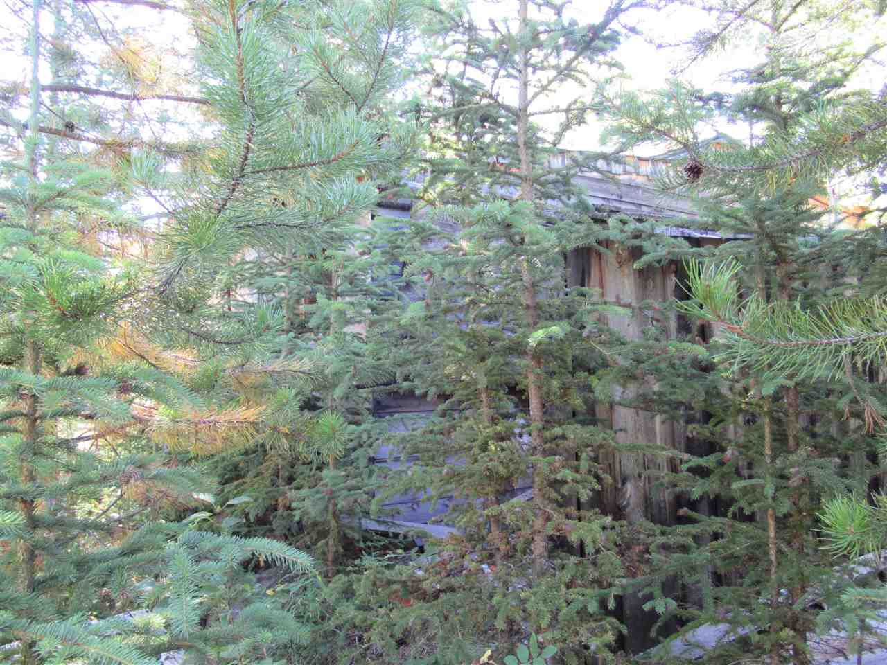 Photo 24: Photos: DL 6426 TONKA Road: 150 Mile House Land for sale (Williams Lake (Zone 27))  : MLS®# R2497364
