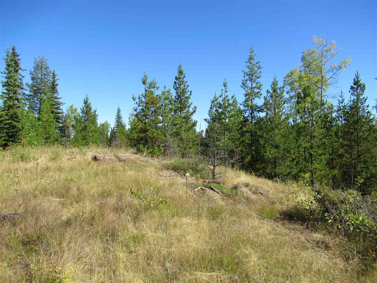 Photo 9: Photos: DL 6426 TONKA Road: 150 Mile House Land for sale (Williams Lake (Zone 27))  : MLS®# R2497364