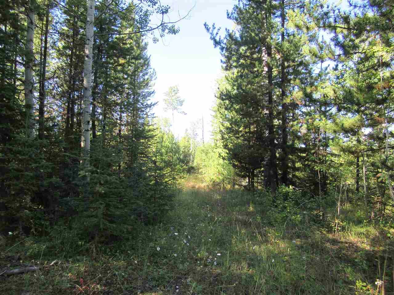 Photo 5: Photos: DL 6426 TONKA Road: 150 Mile House Land for sale (Williams Lake (Zone 27))  : MLS®# R2497364