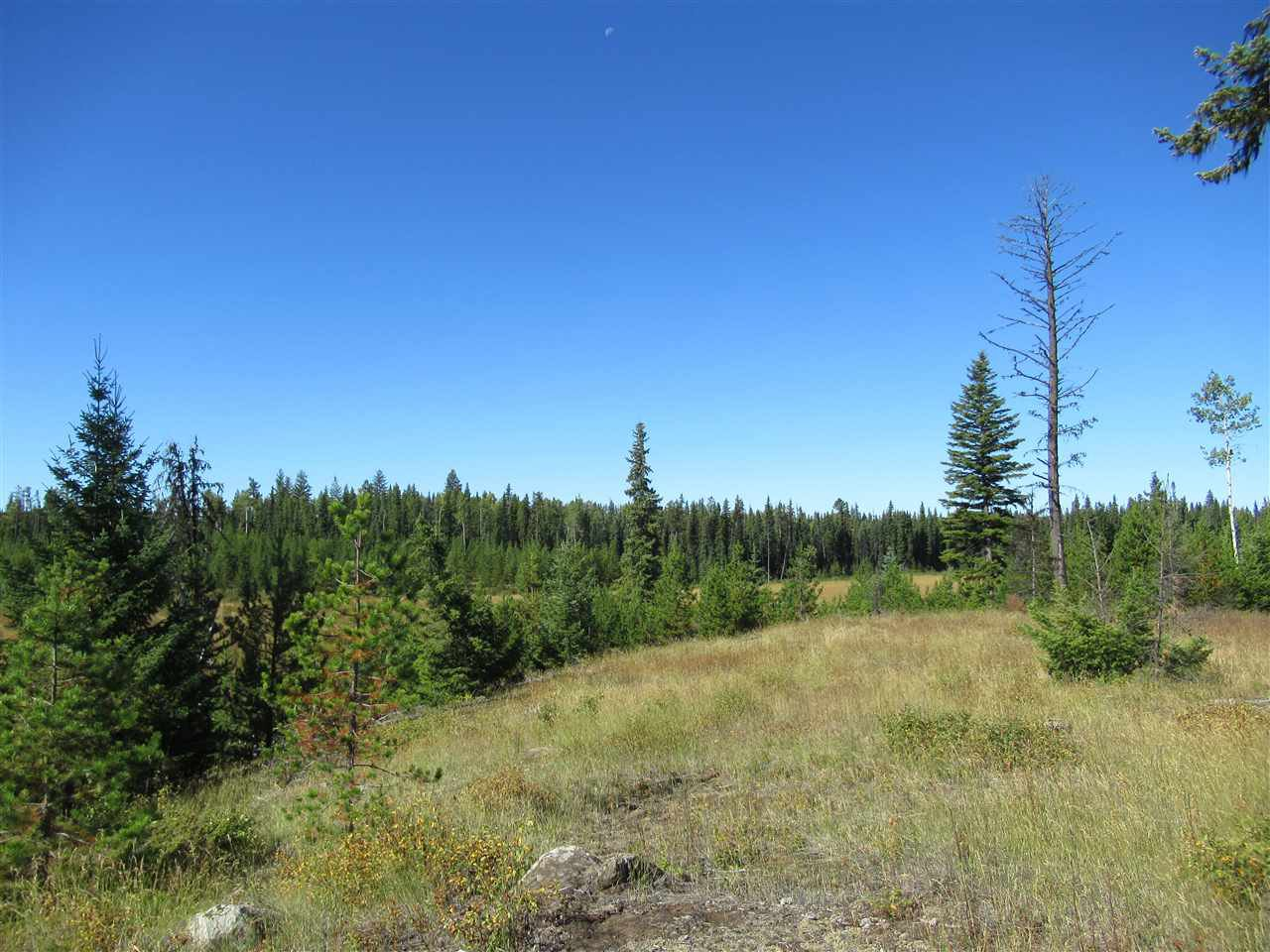 Photo 14: Photos: DL 6426 TONKA Road: 150 Mile House Land for sale (Williams Lake (Zone 27))  : MLS®# R2497364