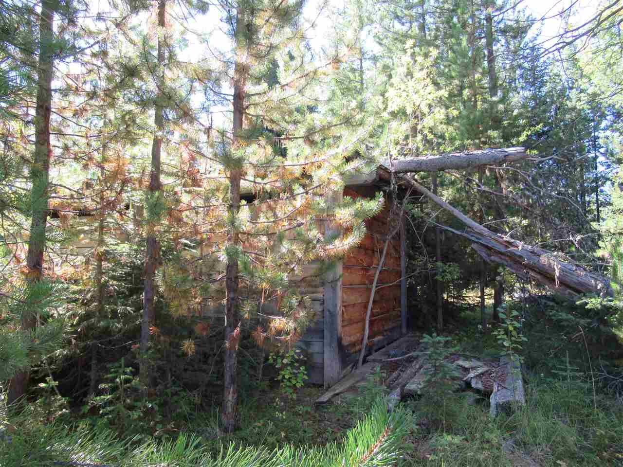 Photo 3: Photos: DL 6426 TONKA Road: 150 Mile House Land for sale (Williams Lake (Zone 27))  : MLS®# R2497364