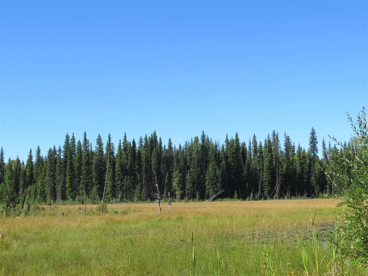 Photo 18: Photos: DL 6426 TONKA Road: 150 Mile House Land for sale (Williams Lake (Zone 27))  : MLS®# R2497364
