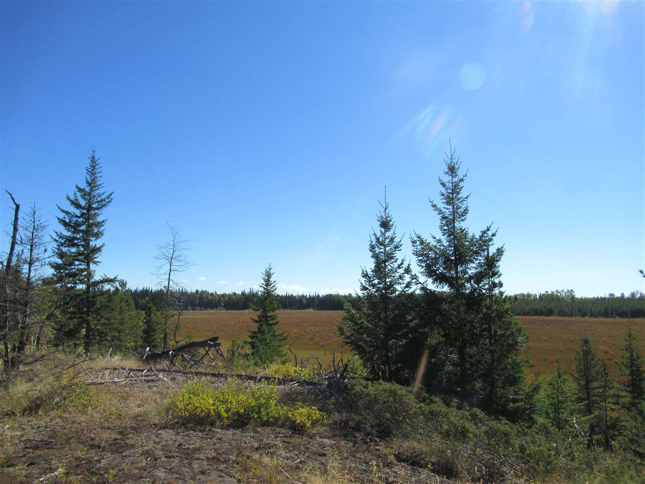 Photo 15: Photos: DL 6426 TONKA Road: 150 Mile House Land for sale (Williams Lake (Zone 27))  : MLS®# R2497364