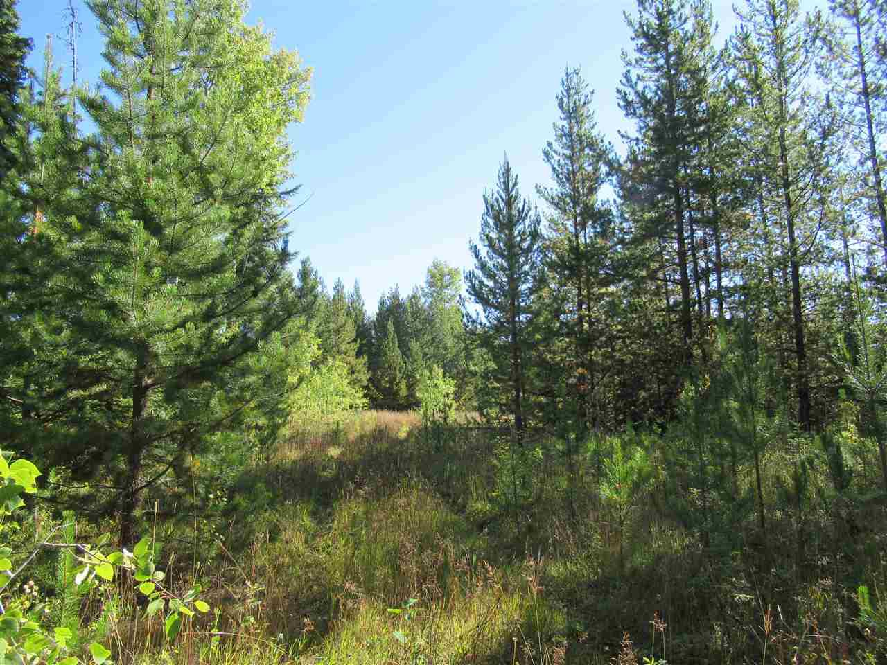 Photo 2: Photos: DL 6426 TONKA Road: 150 Mile House Land for sale (Williams Lake (Zone 27))  : MLS®# R2497364