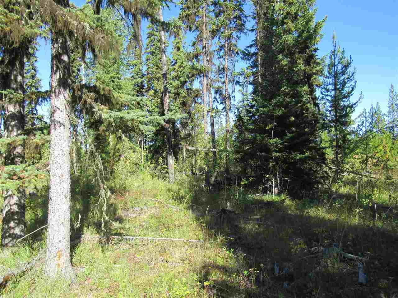 Photo 7: Photos: DL 6426 TONKA Road: 150 Mile House Land for sale (Williams Lake (Zone 27))  : MLS®# R2497364