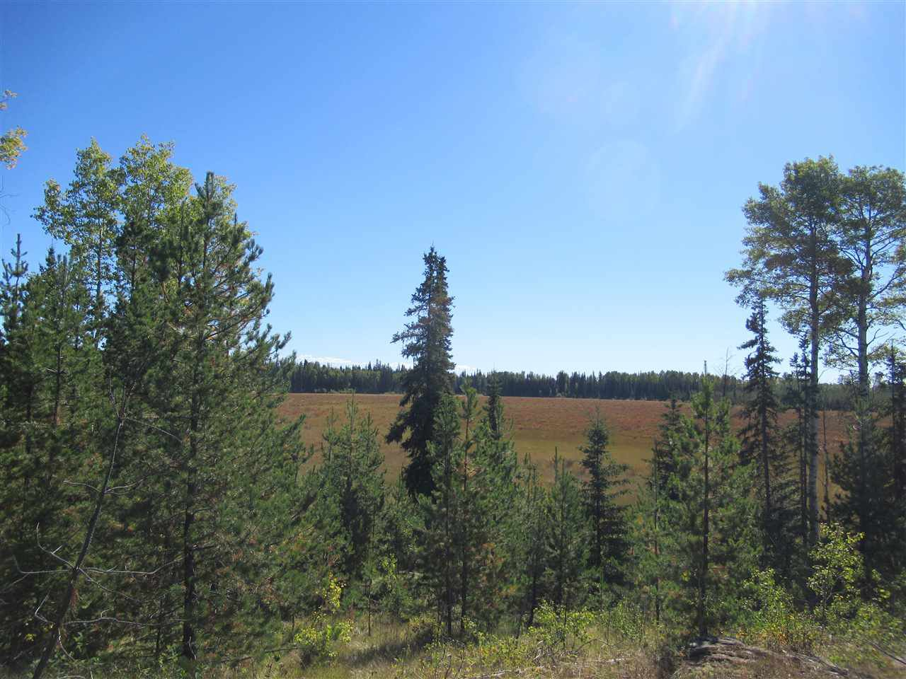 Photo 8: Photos: DL 6426 TONKA Road: 150 Mile House Land for sale (Williams Lake (Zone 27))  : MLS®# R2497364