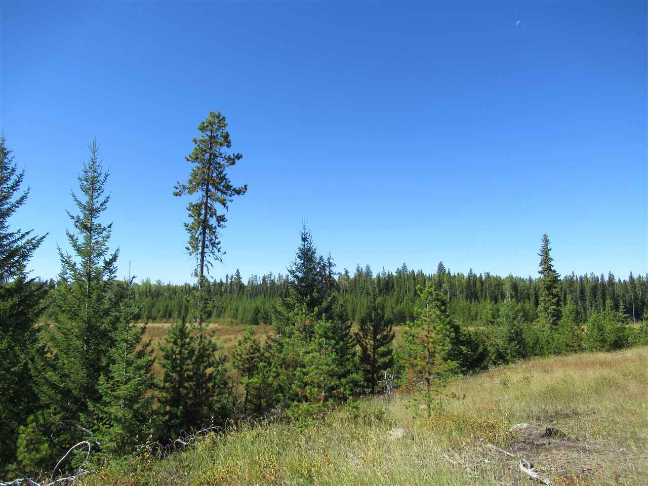 Photo 17: Photos: DL 6426 TONKA Road: 150 Mile House Land for sale (Williams Lake (Zone 27))  : MLS®# R2497364