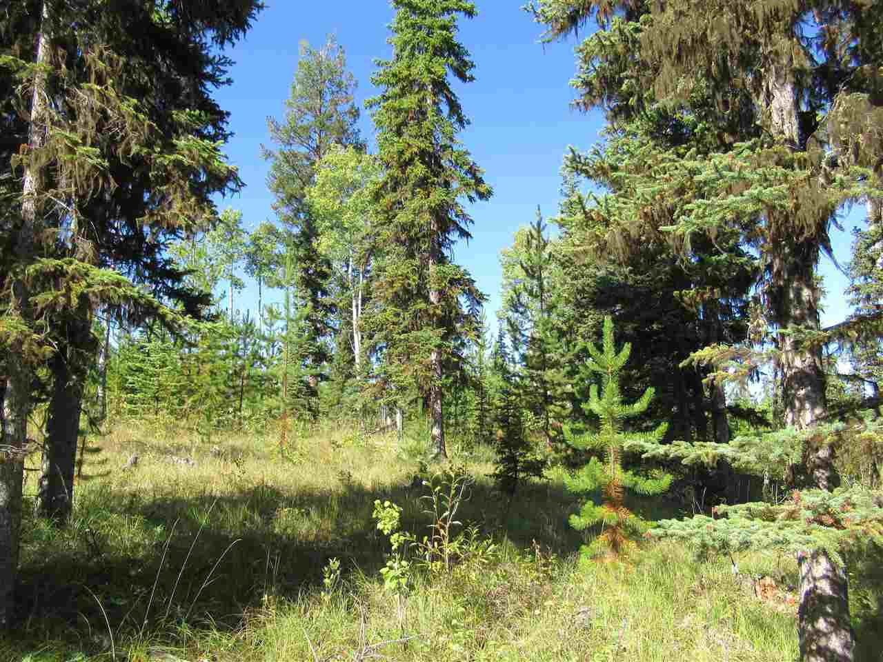 Photo 6: Photos: DL 6426 TONKA Road: 150 Mile House Land for sale (Williams Lake (Zone 27))  : MLS®# R2497364