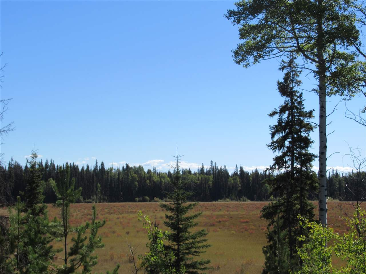 Photo 11: Photos: DL 6426 TONKA Road: 150 Mile House Land for sale (Williams Lake (Zone 27))  : MLS®# R2497364