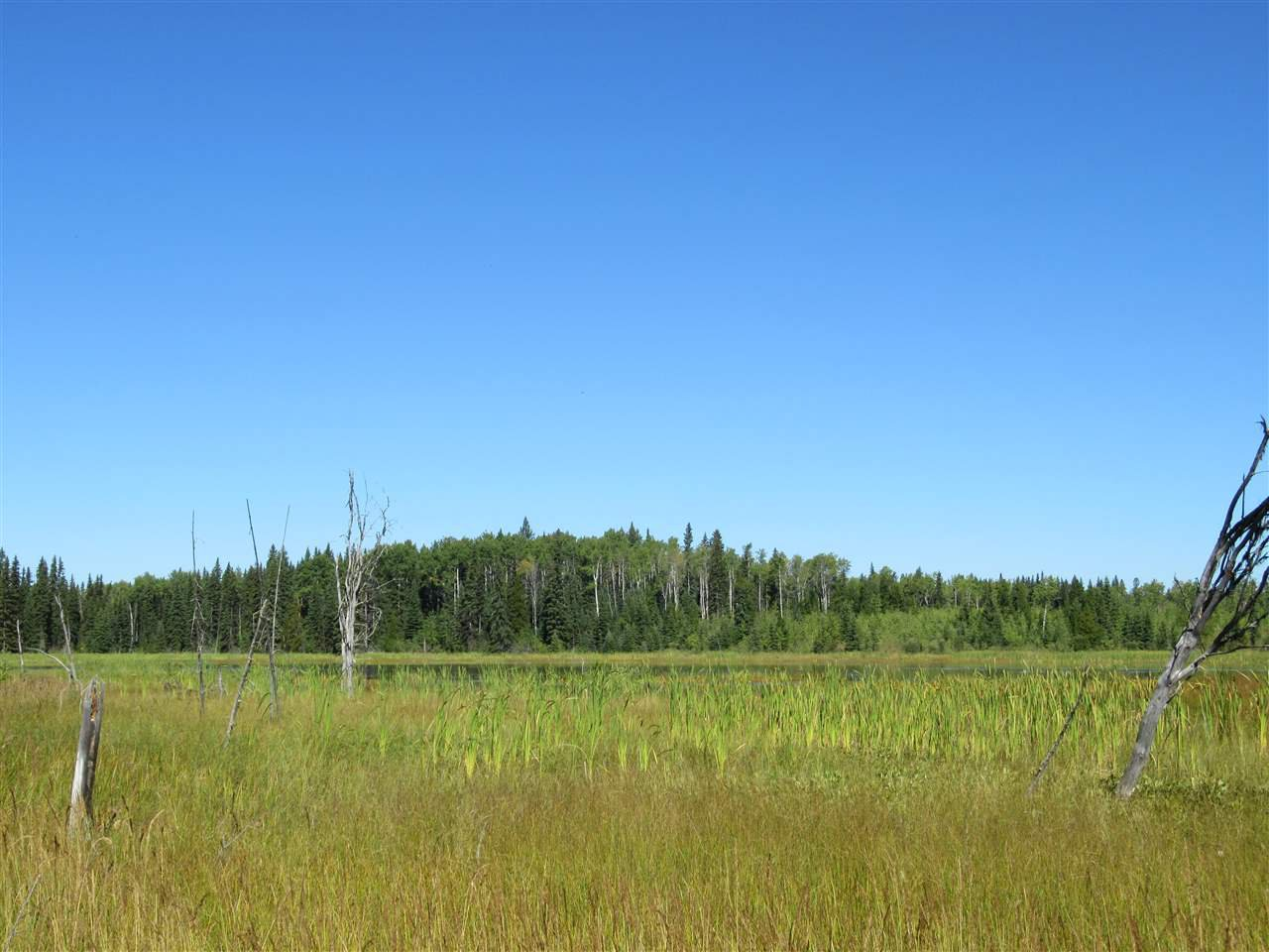 Photo 19: Photos: DL 6426 TONKA Road: 150 Mile House Land for sale (Williams Lake (Zone 27))  : MLS®# R2497364