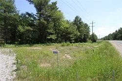 Main Photo: 5238 County Rd 121 Road in Minden Hills: Property for sale : MLS®# X4678347