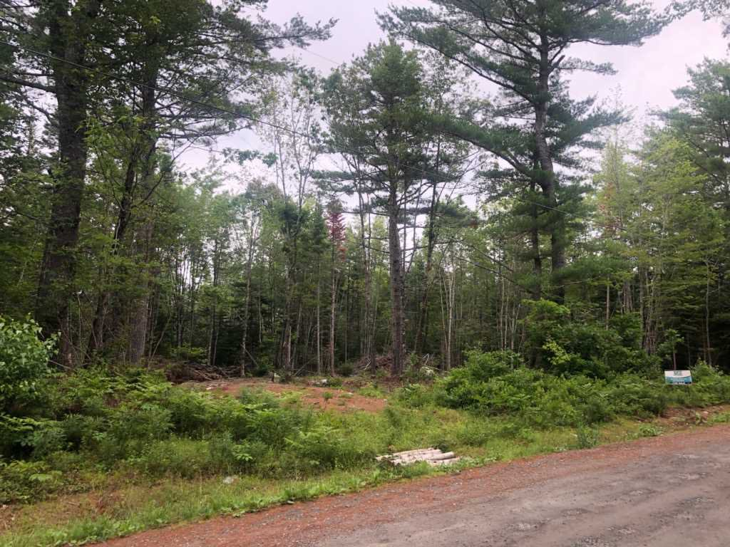 Main Photo: Lot Medway River Road in Riversdale: 406-Queens County Vacant Land for sale (South Shore)  : MLS®# 202013217