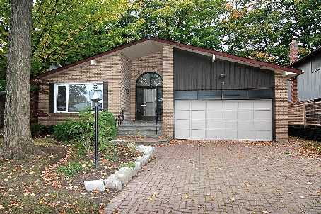 Main Photo: 73 Senator Reesor's Drive in Markham: House (Backsplit 4) for sale (N11: LOCUST HIL)  : MLS®# N2002550