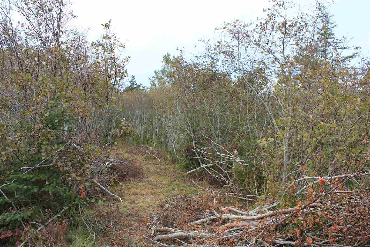 Main Photo: Lot 1 Lake Doucette Road in Lake Doucette: 401-Digby County Vacant Land for sale (Annapolis Valley)  : MLS®# 202021484