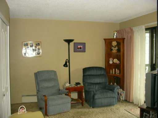 """Photo 3: Photos: 306 340 9TH ST in New Westminster: Uptown NW Condo for sale in """"BROW OF THE HILL"""" : MLS®# V591765"""