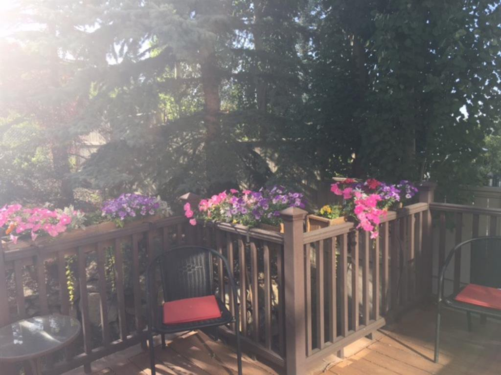 Photo 44: Photos: 347 Patterson Boulevard SW in Calgary: Patterson Detached for sale : MLS®# A1049515