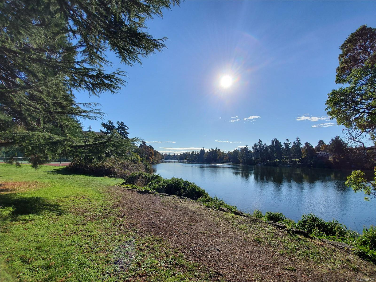 Main Photo: 207 75 W Gorge Rd in : SW Gorge Condo for sale (Saanich West)  : MLS®# 858739