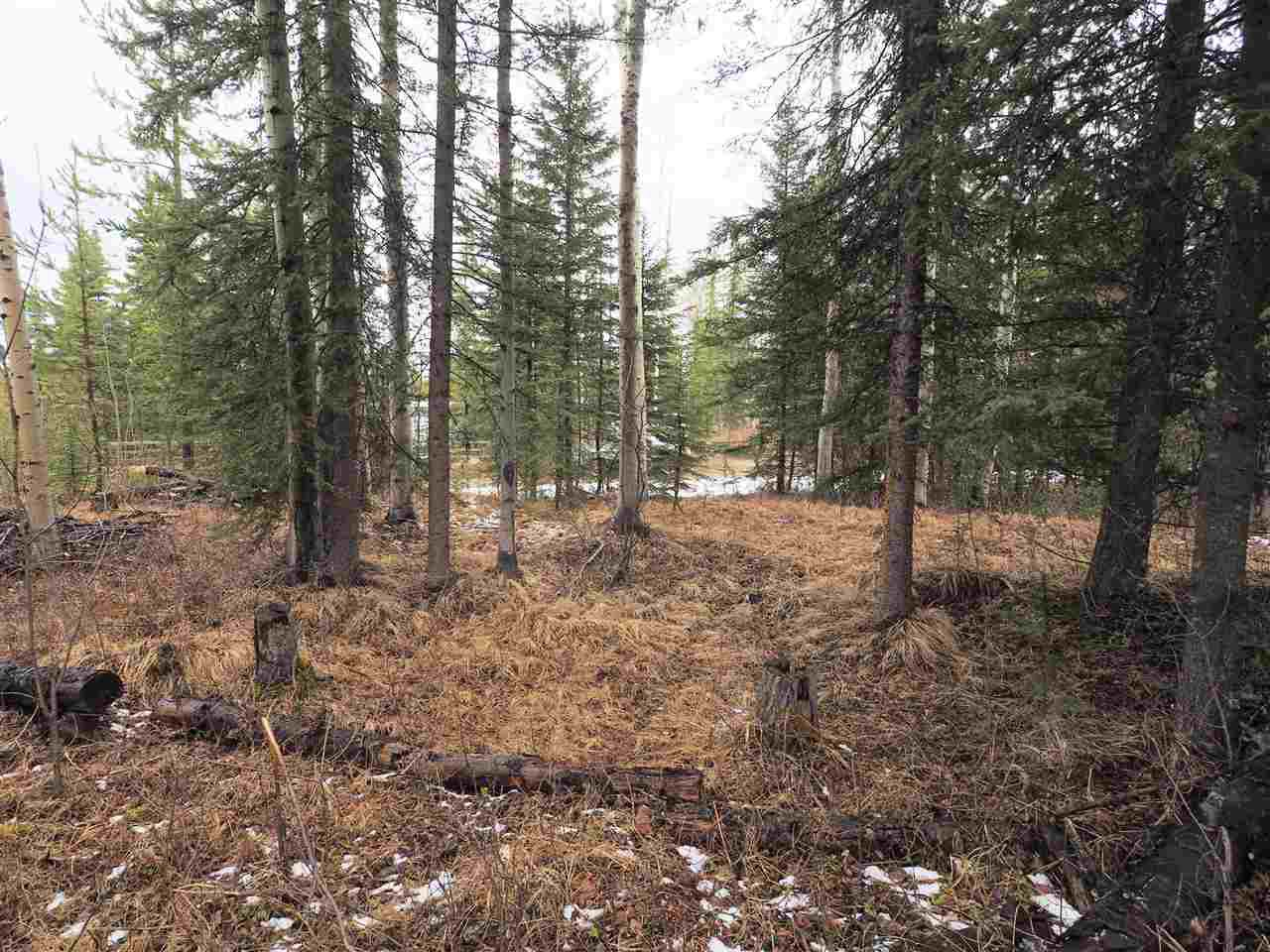 Photo 4: Photos: LOT 208 INGENTO Road in Deka Lake / Sulphurous / Hathaway Lakes: Deka/Sulphurous/Hathaway Lakes Land for sale (100 Mile House (Zone 10))  : MLS®# R2397811