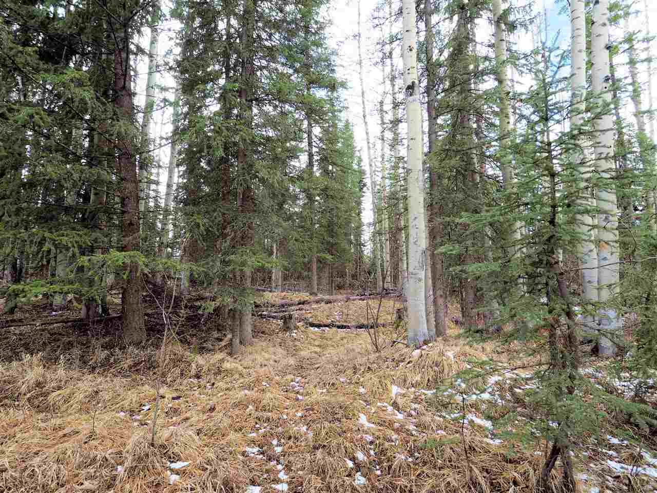 Photo 3: Photos: LOT 208 INGENTO Road in Deka Lake / Sulphurous / Hathaway Lakes: Deka/Sulphurous/Hathaway Lakes Land for sale (100 Mile House (Zone 10))  : MLS®# R2397811