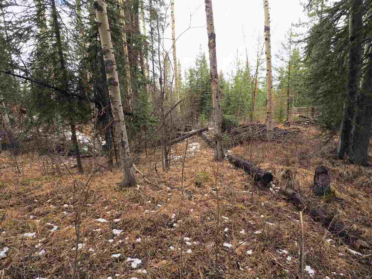 Photo 5: Photos: LOT 208 INGENTO Road in Deka Lake / Sulphurous / Hathaway Lakes: Deka/Sulphurous/Hathaway Lakes Land for sale (100 Mile House (Zone 10))  : MLS®# R2397811
